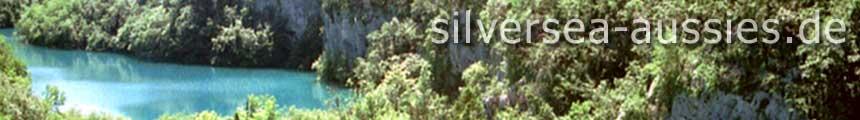 silversea-aussies.de
