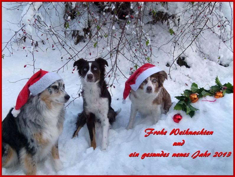 Frohe weihnachten und ein gesundes neues jahr wunschen